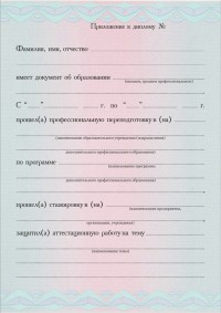 Бланк приложения к диплому с типографским текстом формат А5 Стандартный плюс (лицевая сторона)