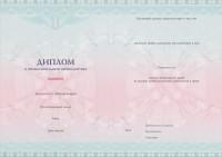 Бланк диплома о профессиональной переподготовке с типографским текстом от 250 до 1000 часов (оборотная сторона)